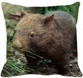 Wistful_Wombat.jpg