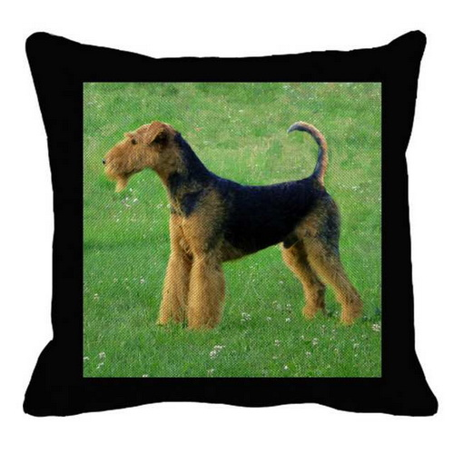 Airedale Standing on Green