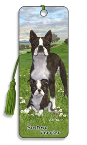 Artgame_BK82BOS_Boston_Terrier