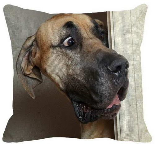 Great Dane Surprise