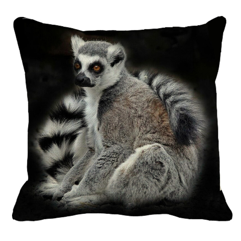 Lovely Lovely Lemur
