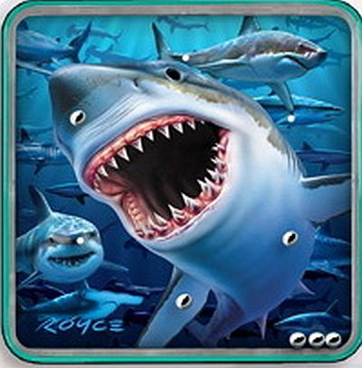 Shark Magnetic Puzzle